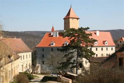 1369747299_PKS2c7585_Brnensky_hrad_Veveri..jpg